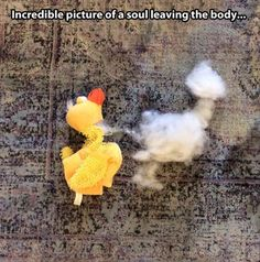 incredible picture of a soul leaving a body... LOL