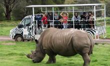 worz-family-off-road-safari-web620