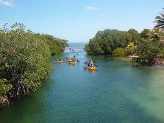 Bike & Clear Bottom Kayak Adventure  Costa Maya, Mexico