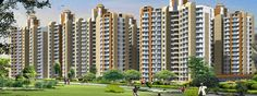 JM Housing Presenting its innovative project JM New Project at Noida Extension with his inexorable Smart works to exceed client prospect, enhancing the superiority of their lives and creating delusion abodes for them has won us a distinctive position in the world of real estate.   http://www.allcheckdeals.com/project-jm-new-project-noida.php