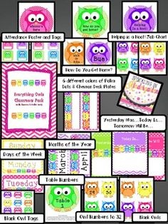 Everything Owls Classroom Pack$ with Chevron & Polka Dots