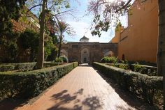 Seville Travel Blog Alcazar Palace Gardens Wow Beautiful