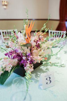 Sandals Royal Bahamian Weddingmoons | SouthBound Bride | http://southboundbride.com/caribbean-dream | Credit: Alexis June Weddings