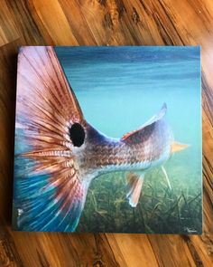 Painted Horses, Fish Artwork, Fish Paintings, Underwater Art, Nautical Art, Red Fish, Ocean Art, Wildlife Art, Canvas Art