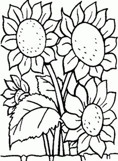 Flowers Coloring pages. Printable Flower Coloring Pages.These printable flower coloring pages are free. Coloring pictures and sheets of f. Sunflower Coloring Pages, Food Coloring Pages, Coloring For Kids, Adult Coloring Pages, Coloring Books, Coloring Pages Of Flowers, Flower Coloring Sheets, Coloring Pictures For Kids, Halloween Coloring Pages