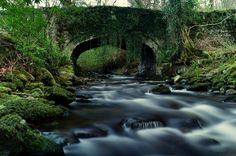 River Torc. by Krzysztof Szwab on 500px