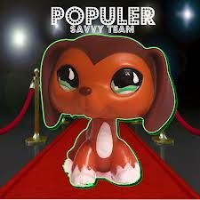 A TON of people wonder what LPS popular is...so what is it? Its a lps show on youtube! its by sofhiegtv! SHES AWESOME! anway brooke and savvy were best friends until brooke moved away.......watch popular to found out  more!!! OK! IM TEAM BROOKE!!!! (: BYE!!!! -AUDREY (: