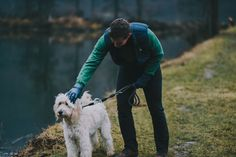 Go for a walk with your dog and without frozen fingers. Gloves Fashion, Goldendoodle, Leather Gloves, Fingers, Your Dog, Frozen, Luxury, Dogs, Animals