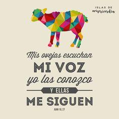 Islas de Misericordia by Sarai Llamas - Mis ovejas escuchan mi voz - Juan 10…