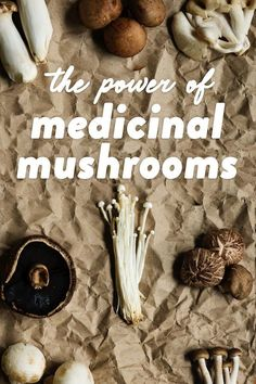 Are mushrooms worth all the Internet hype? In short: Yes! In this post, I provide an overview of some of the scientifically-proven benefits of medicinal mushrooms. #medicinalmushrooms #mushrooms #mushroomsupplement #immunehealth #guthealth Paleo Mom, Paleo Diet, Mushroom Species, Gut Microbiome, Group Meals, Gut Health, Healthy Lifestyle, Fiber, Stuffed Mushrooms