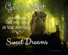 """""""Good Night. Owl see you in the morning."""" Sweet Dreams. By: Terri Smith <3 Stormy Created: 8/31/2014"""