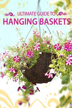 Great resource for hanging basket lovers - http://www.ambius.com/blog/ultimate-hanging-baskets-guide/