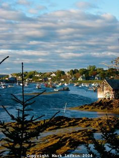 Maine Coastal Village   for my summer vacation cottage