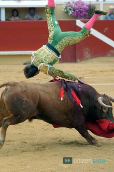 green matador sent flying
