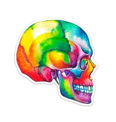 Skull Anatomy, Human Anatomy Art, Heart Anatomy, Medical Gifts, Old Paper, Heart Art, Sticker Design, Creative Business, New Art