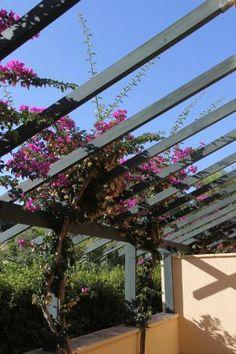 Our patio off the suite, Serra degli Alimini 1  |  Serra degli Alimini 1, 73028 Alimini, Italy