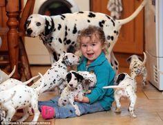 15 Dalmatian puppies!