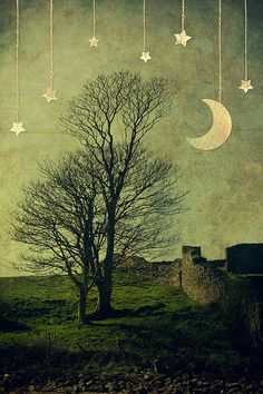 Moon and Trees and Stars by Child of Danu, via Flickr
