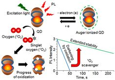 Uncovering the mechanism of photoluminescence stabilization in semiconductor nanoparticles