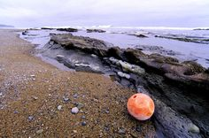 Orange Fishing Float, Darling River Beach, West Coast Trail, Pacific Rim National Park Reserve, Vancouver Island, BC, Canada