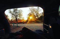 The sun rising behind scraggly desert trees • free campsite, Mungo National Park by (_charlotteoneill). darlingescapes #theadventurehandbook #family #natgeoadventure #backpacking #seeaustralia #lifeisbeautiful #love #explore #mungonationalpark #exploremore #staywildmag #outdoorlife #livefolk #adventure #travel #writersofig #australia #liveauthentic #travelvibes #dametraveler #australiantraveler #vanlife #bucketlist #womenwhowrite #living #adventureon #eventprofs #eventplanning…