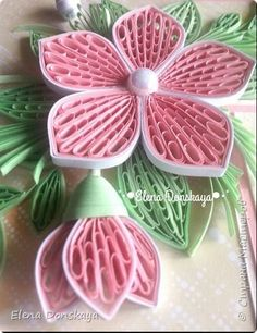 Flowers - quilled by: Elena Donskaya                              …