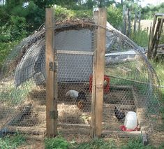 movable chicken pen by simplykonawhim, via Flickr @Shannon Anderson