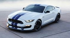 Shelby 2015