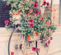 Image detail for -Gossip´s Fashion Week: la bicicleta en decoración