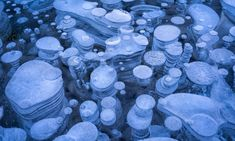 Underwater ice bubbles... that are actually created by plants releasing gas. The rare phenomenon occurs each winter in the man-made lake, as the plants on the lake bed release methane gas, which freezes as it comes closer to the cold lake surface.