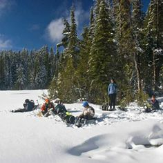 Guided Winter Hikes, Snowshoes at Snoqualmie — Washington Trails Association