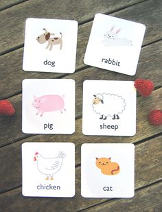 Printable Animal Flash Cards - Mr Printables