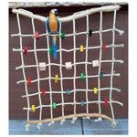 Site has different ideas on what bird nets are out there. I like this one that…