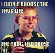 Check out this extremely funny picture of a little white kid telling everyone that the thug life has chosen him. Prepare to laugh at this funny picture representing thug life! Memes Humor, Funny Memes, Nerd Memes, Hilarious Quotes, Funniest Memes, Funny Captions, Funny Facts, Videos Funny, Viral Videos