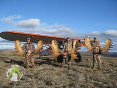 Our fully guided, trophy moose hunts in Alaska average an 80% to 90% success rate yearly on trophy bulls. Alaska Hunting, Moose Hunting, Big Game Hunting, Hunting Trips, Outdoor Activities, Hunts, Adventure, Laundry Hacks, Animals