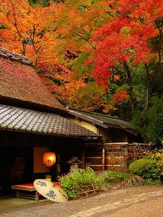Autumn - Kyoto, Japan