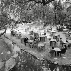 1960 - Livadia town in central Greece Greece Photography, History Of Photography, Greece Pictures, Old Pictures, Vintage Pictures, Greece History, Old Time Photos, Great Photographers, Athens Greece