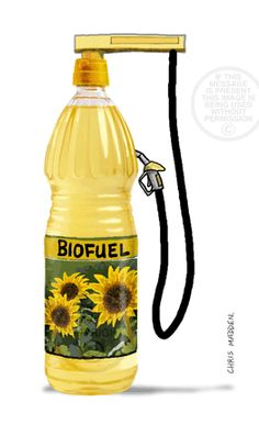 How To Make Biodiesel From Old Cooking Oil - LivingGreenAndFrugally.com