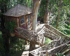 Another of Roderick Romero's stunning treetop creations, this one built on eucalyptus trees in Brentwood, CA.