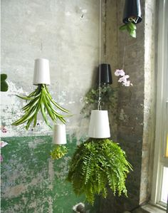 Display Idea ~ modern garden for your store windows.
