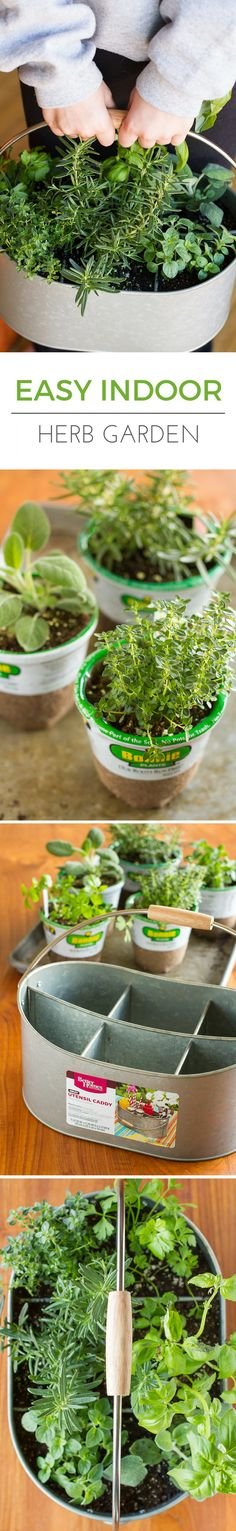 Easy Indoor Herb Garden -- I was an indoor container gardening failure, until I decided a different approach was in order. Find out how you can create this simple indoor herb garden in under 10 minutes!   via @unsophisticook on unsophisticook.com
