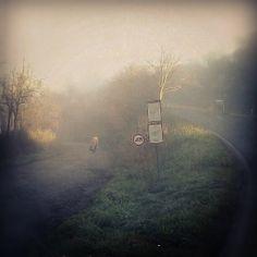 Winter Walk http://sphotos-h.ak.fbcdn.net/hphotos-ak-ash4/293138_3754993447822_627862219_n.jpg