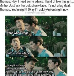 Only thing that would make this better would be if Newt was in it<<<<I can fix that *ahem* Minho : You do know Newt has a crush on her right? Thomas : No Minho : well now u do Maze Runner Funny, Maze Runner Thomas, Maze Runner Cast, Maze Runner Movie, Maze Runner Trilogy, Maze Runner Series, Ouat, The Scorch Trials, Thomas Brodie Sangster