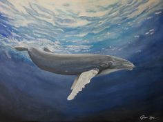 Humpback Whale Acrylic Painting