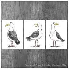 seagull illustration - Google Search