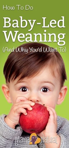 Baby led weaning encourages baby to self-feed rather than receive purées via spoon. Here's how to practice it with a list of baby led weaning first foods! http://www.mamanatural.com/baby-led-weaning/