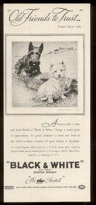 1936 Scottish Terrier Westie on golf course Black & White Whisky Ad
