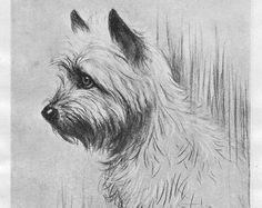 Scottish Terrier by Rien Poortvliet 1983 by OLDBOOKSMAPSPRINTS