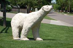 In every yard . Park Rapids, Prior Lake, Brooklyn Park, White Bear Lake, Minnesota, Lawn, Bears, Memories, History