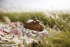 laying on a blanket having a picnic by the sea with the tall grass waving...and reading.